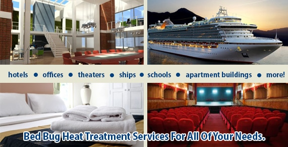 Bed Bug Control NYC, Bed Bug Pictures NYC, Chemical Free Bed Bug Treatment NYC, Get Rid of Bed Bugs NYC, Bed Bug Spray NYC, What to do Bed Bugs look like NYC, Kill Bed Bugs NYC, Bed Bug Treatment NYC, Bed Bug Dog NYC, How to get Rid of Bed Bugs NYC,