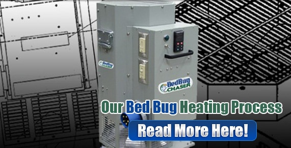 Bed Bug bites Brooklyn, Bed Bug spray Brooklyn, hypoallergenic Bed Bug treatments Brooklyn