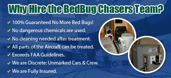 Aircraft Bed Bug Treatment, Private Jet Bed Bug Treatment, Airplane Bed Bug Treatment, Bed Bug Bites Brooklyn, Bed Bug Pictures Brooklyn, Chemical Free Bed Bug Treatment Brooklyn, Get Rid of Bed Bugs Brooklyn, Bed Bug Spray Brooklyn