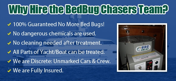 Chemical Free Bed Bug Treatment Brooklyn, Get Rid of Bed Bugs Brooklyn, Bed Bug Spray Brooklyn, What to do Bed Bugs look like Brooklyn, Kill Bed Bugs Brooklyn, Bed Bug Treatment Brooklyn, Bed Bug Dog Brooklyn, How to get Rid of Bed Bugs Brooklyn, Bed Bug Heat Treatment Brooklyn, Bed Bug Eggs Brooklyn, Brooklyn Bed Bug Exterminator, Bed Bug Images Brooklyn, Bed Bug Inspection Brooklyn,