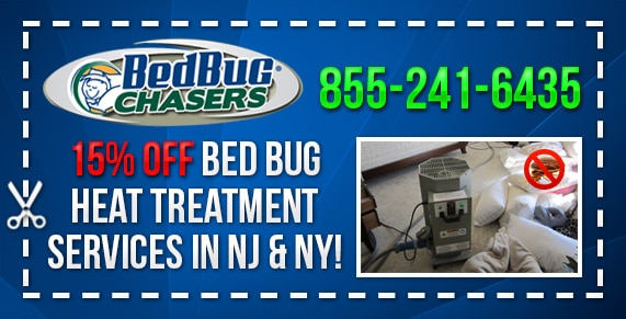 Bed Bug pictures Brooklyn, Bed Bug treatment Brooklyn, Bed Bug heat Brooklyn